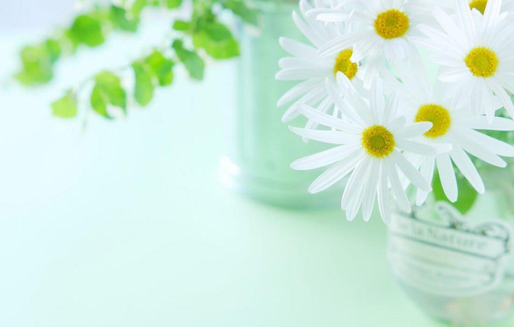 花瓶と白い花